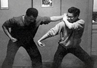 What is Practical Martial Art? An Article by Fahad Rehman