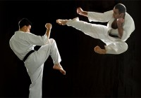 Kyokushin Karate and MMA
