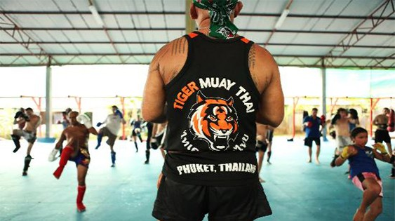 Tiger Muay Thai and MMA Review