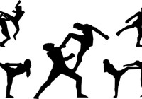 State of Martial Arts in Pakistan today
