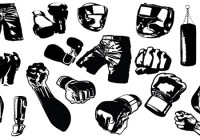 MMA Pakistan expands into MMA gear