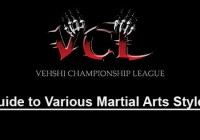VCL Guide to Various Martial Arts Styles